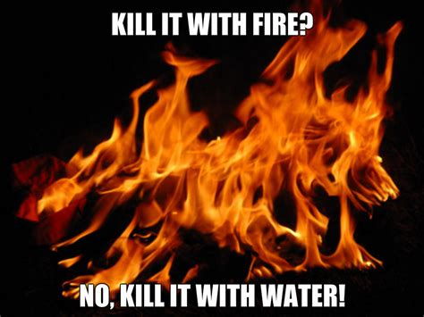 Kill It With Fire Meme - kill it with fire meme by sassymuffins on deviantart