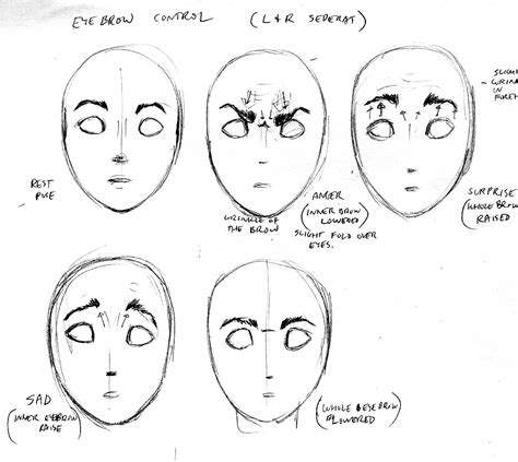 adding expression how to draw eyebrows step by step cse490ca spr2000 reference materials
