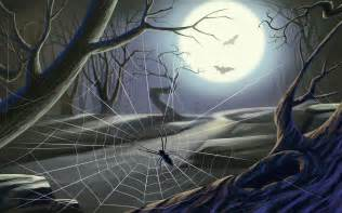 imagenes background web halloween spider web wallpaper 480008