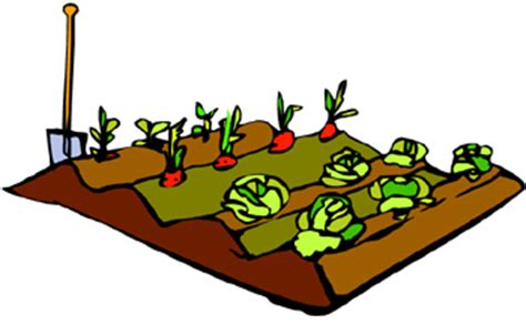 Sign Up Now For The 4 H Mini Garden Project Clover Gazette Vegetable Garden Clipart