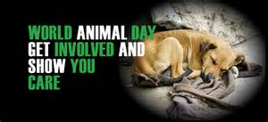 Essay On World Animal Welfare Day by World Animal Day Let S Promise To Take Care Of Our Friends Pkkh Tv