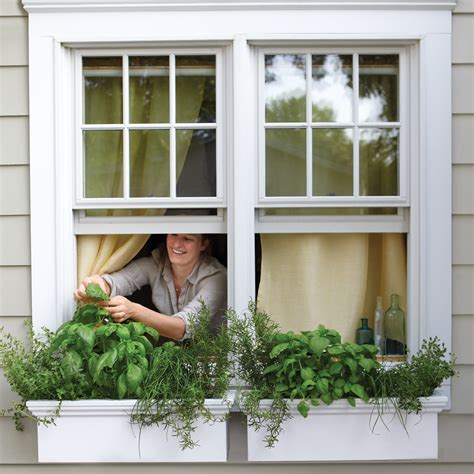 clean how growing without animals will revolutionize dinner and the world books small space garden ideas martha stewart