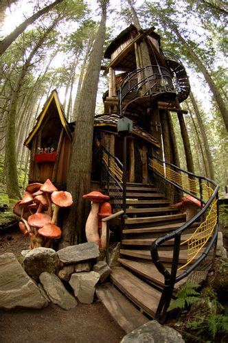 enchanted forest revelstoke bc best place to visit