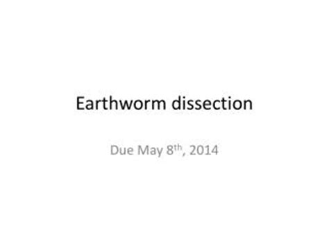 earthworm dissection analysis ppt the earthworm powerpoint presentation id 293818