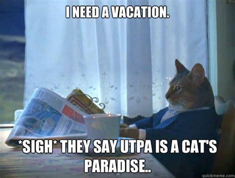 I Need A Vacation Meme - i need a vacation sigh they say utpa is a cat s