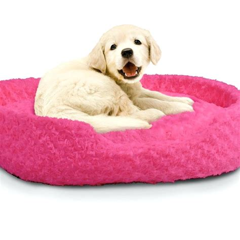 small dog beds cute pink dog beds for small dogs cute dog beds for dog