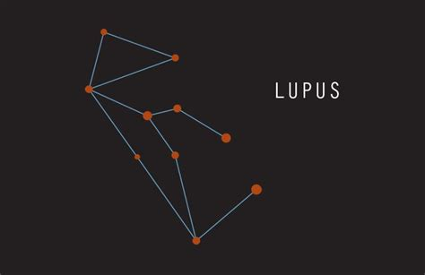 lupus constellation constellations lupus wolf my