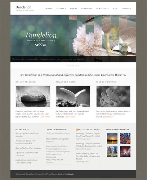 templates for wordpress website dandelion powerful elegant wordpress theme by pexeto