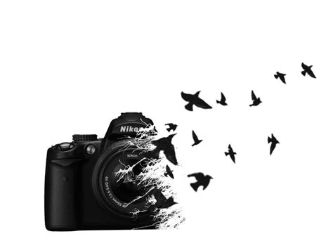 photography tattoo designs the birds don t make sense but it d be cool if they were