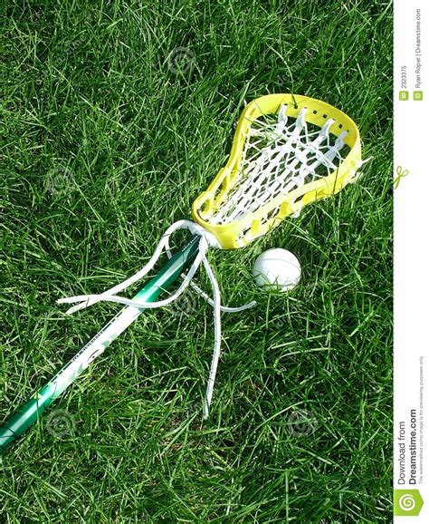 and sticj lacrosse stick and ball stock image image of ball women 2323375