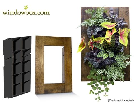 indoor living wall great ideas with indoor living wall kit