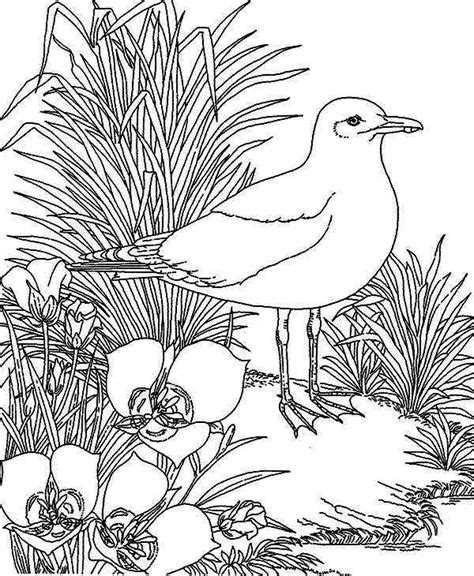 Coloring Page Carabao Beautiful Flowers Coloring Pages