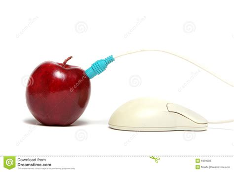 Apple Mouse Cable apple and mouse cable connection royalty free stock image image 1859386