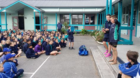 greenmeadows sports exchange havelock north primary
