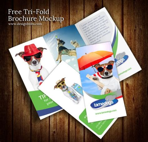 3d Brochure Templates Psd by Colorful Brochure Design Mockup Psd Template Psd File
