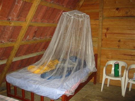 bed bug net mosquitoes how can i protect a room from bugs without using mosquito nets or visible