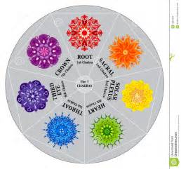 Hindu Flower Tattoo - 7 chakras color chart with mandalas stock images image