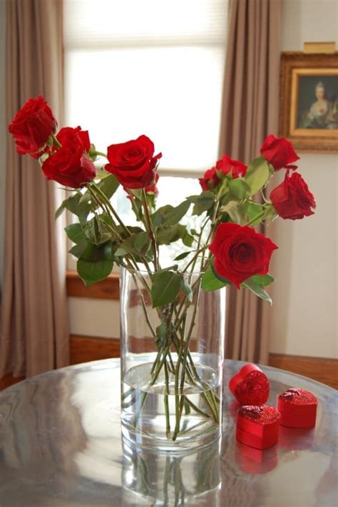 How To Arrange Roses In Vase by How To Arrange 1 Dozen Roses The Of Doing Stuffthe Of Doing Stuff