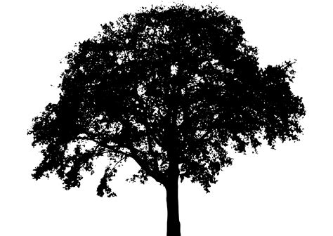 tree tattoo png tree silhouette 6 icons png free png and icons downloads