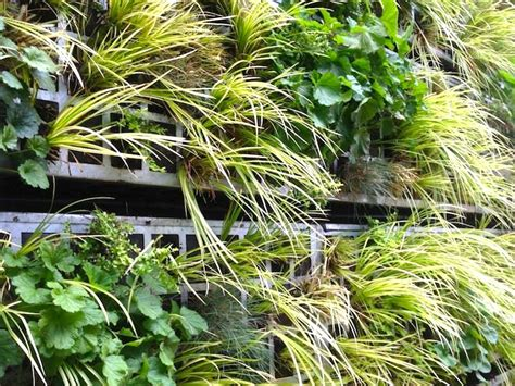 living air garden pops up at the reina sofia museum in