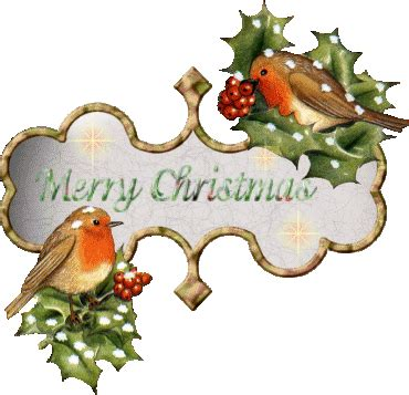 christmas welcome birds birds graphics and animated gifs picgifs
