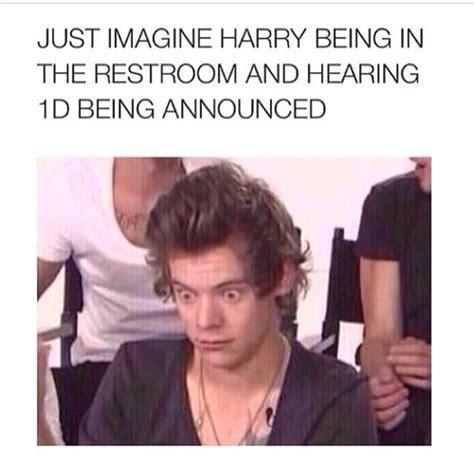 Harry Styles Memes - harry styles memes