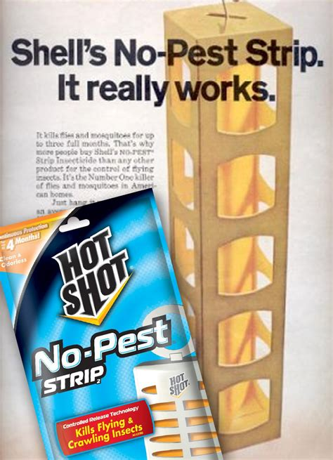 bed bug strips care with bed bug insecticide insects in the city