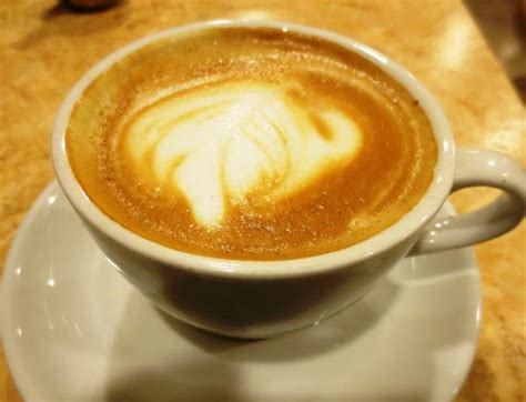 Excelso Coffee excelso coffee tauranga restaurant reviews phone number photos tripadvisor