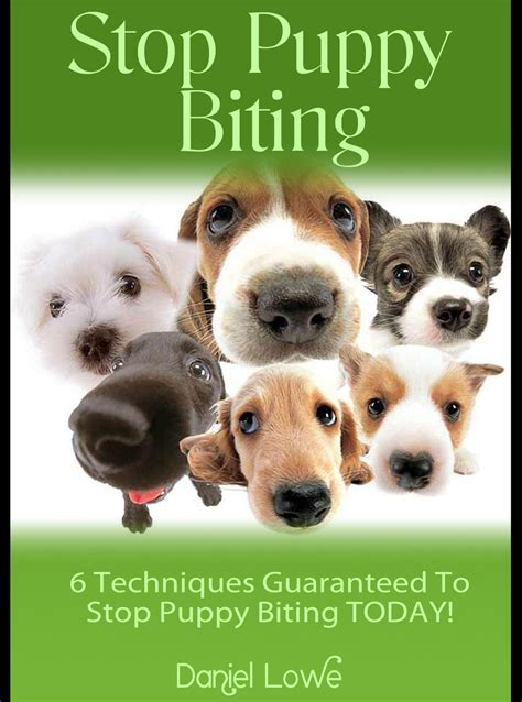 stopping a puppy from biting how to stop puppy biting puppy behaviour