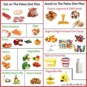 a paleo diet plan that can save your about low carb foods