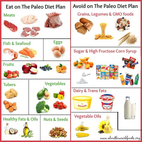 vegetables on paleo diet a paleo diet plan that can save your about low carb