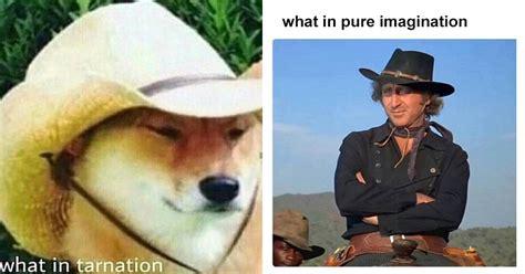 review      tarnation memes