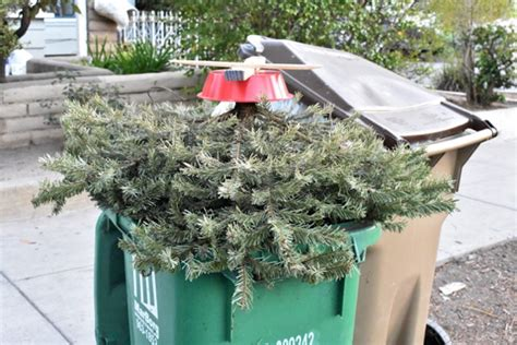 waste management christmas trees how to get rid of your tree this week in santa barbara county local news noozhawk