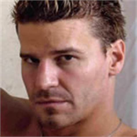 david boreanaz wrist tattoo world s 101 with tattoos for 2009