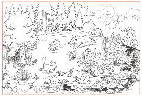 Ecosystem Coloring Pages free pond ecosystem coloring pages