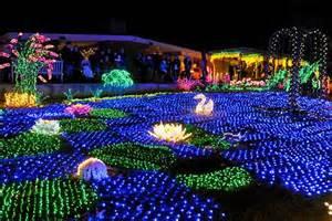 Bellevue Botanical Garden Lights Garden D Lights Light Show At Bellevue Botanical Gardens