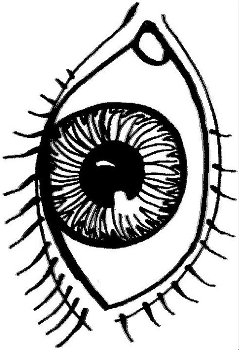 coloring page eyeball free pretty eye coloring pages