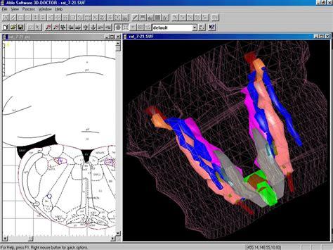 doctor medical modeling  medical imaging