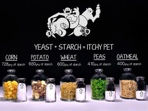 grain  dog foods