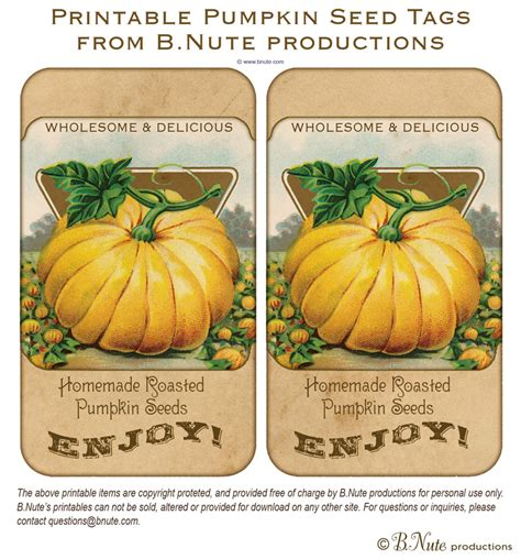 printable pumpkin recipes bnute productions free printable vintage pumpkin seed