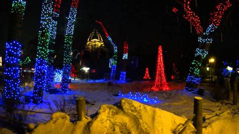 zoo lights calgary zoo calgary zoo zoo lights all i want for is a
