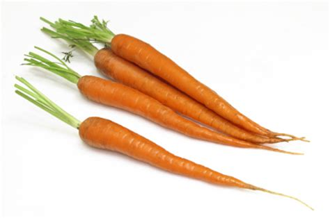 Carrot Juice Mold Detox by Surviving Toxic Mold Mold Exposure Mold Illness Mold