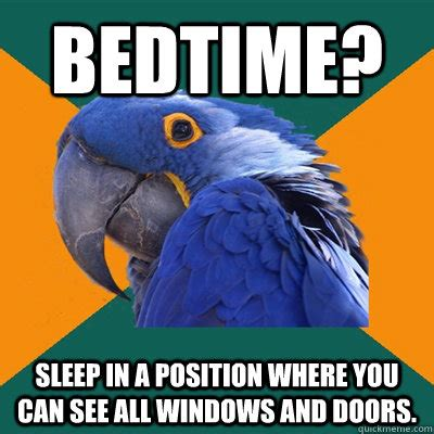 Bedtime Meme - bedtime sleep in a position where you can see all windows