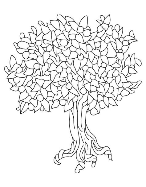 coloring page pecan tree tree without leaves coloring page az coloring pages