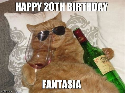 20th Birthday Meme - wine cat birthday imgflip