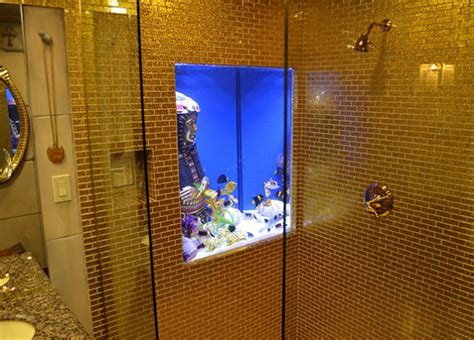 bathroom fish tank gold bathroom fish tank