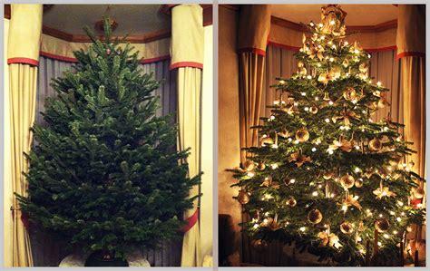 aufstellservice christbaumdealer by steven h 228 mmerle