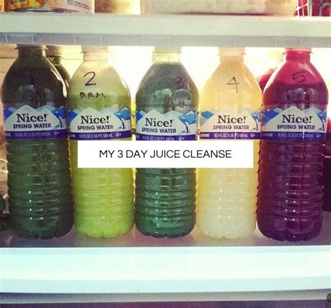 at home juice cleanse plan de 10 b 228 sta id 233 erna om cleanses p 229 pinterest renande