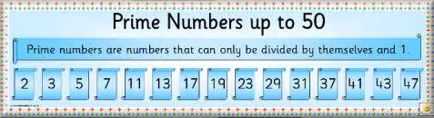 Prime numbers 6s maths