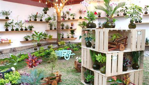 precios de plantas de interior plantas de interior precios best plantas de interior